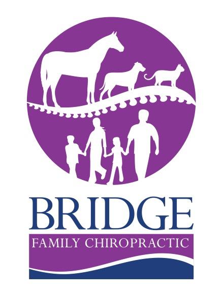 Bridge Family Chiropractic